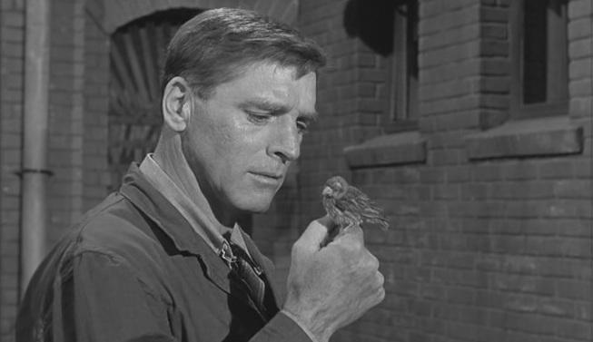 Películas recomendadas sobre personas: El Hombre de Alcatraz