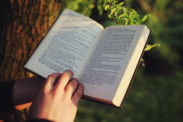 Lecturas recomendadas de #innovación, #gestión, #estrategia y #personas